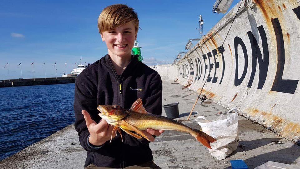 fiskeri efter fladfisk